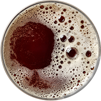 https://www.first15brewhouse.co.za/wp-content/uploads/2017/05/beer_transparent_02.png